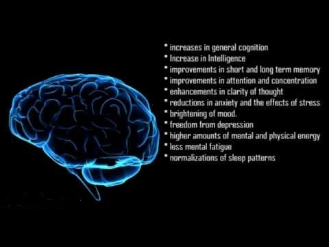 Nootropic Effects
