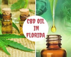 CBD Oil use In Florida