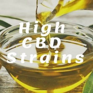 High CBD Strains