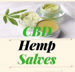 Best CBD Hemp Salves
