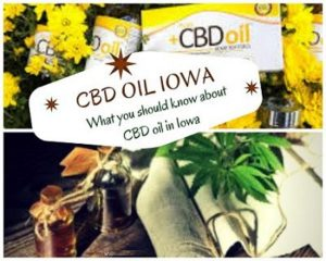 Buy CBD In Iowa