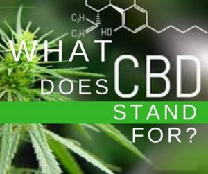 CBD Stand For