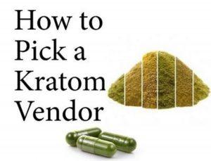 Top 10 Best Kratom Vendors