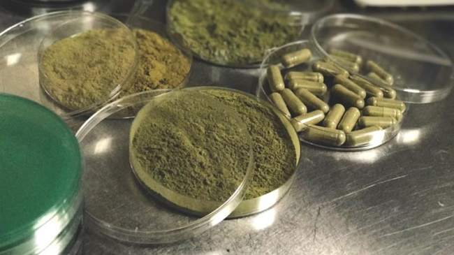 Effects of Kratom